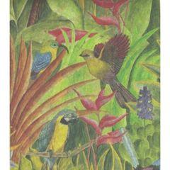 Tropical Birds Tissue Paper - Ten Sheets