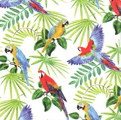 Rain Forest Tropical Birds Tissue Paper - 240 Sheets