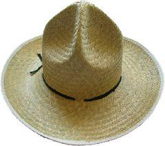 Veracruz Hat- Palm