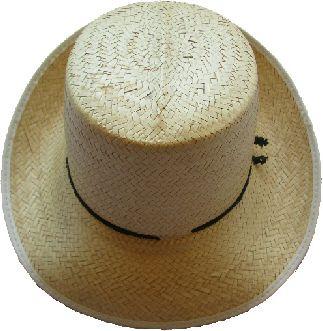 Yucatan Hat - Palm