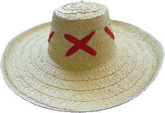 Economic Michoacan Hat