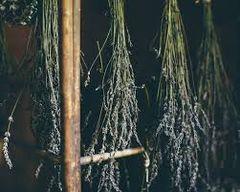 Patchouli Lavender