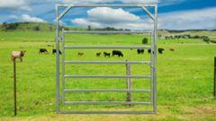 2.1m Cattle Gate Heavy Duty