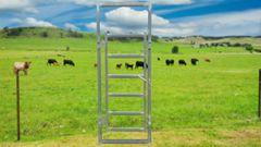 850mm Cattle Man Gate