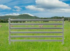 2.1m Sheep Panel
