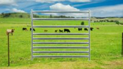2.1m Sheep/Cattle Combo Panels