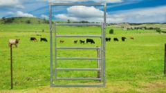 1500mm Cattle Gate