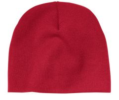 Skull Cap Beanie with NSA Embroidered logo