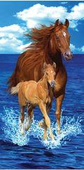 Horses Towel