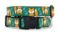 Collar: Foxes