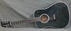 Ibanez PF10BK Acoustic Guitar
