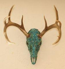 Turquoise Buck