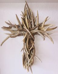Being Blessed Whitetail Antler Shed Cross