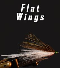 Flat Wing