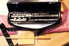 Di Zhao DZ-200 Series Beginner and Step-Up Flutes