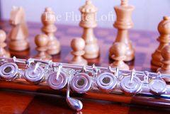 Di Zhao DZ-700 Advanced Flute