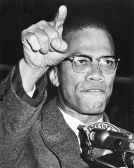 MALCOLM X : THE HOUSE NEGRO AND THE FIELD NEGROS - (CD)