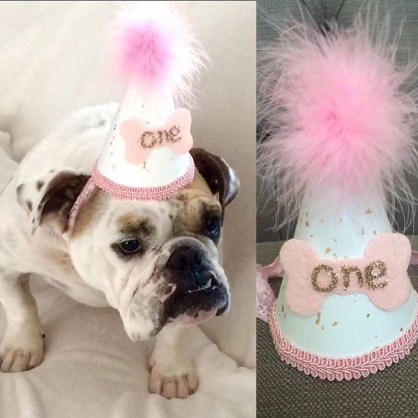 Dog Birthday Hat First Girl