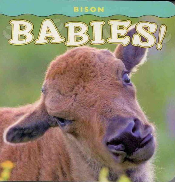 Bison Babies!