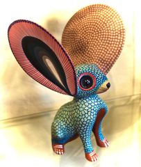 Big Eared Oaxacan Mouse