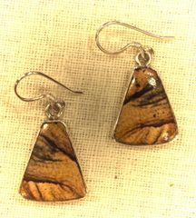 Triangular Picture Jasper Earrings