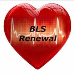 Basic Life Support For Healthcare (BLS) Initial Call or Text (713) 408-2934 to schedule