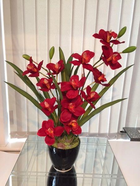 Red Cymbidium Orchid Display Set In A Black Vase Pebbles
