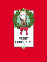 BOXED Christmas Cards: Horse with Wreath - Item # BX Wreath