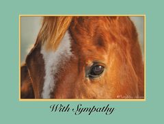 Sympathy Card: With sympathy - Item # GC 5 Sympathy