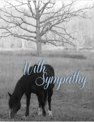 Sympathy Card: With Sympathy - Item # GC 12 Sym