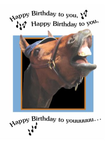 Birthday Card Happy To You