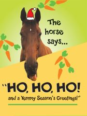 Christmas Card: Ho, ho, ho! - Item# GC X Ho Ho