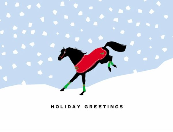 Boxed Christmas Cards Holiday Greetings With Bucking Horse In Blanket Item Bx Buck