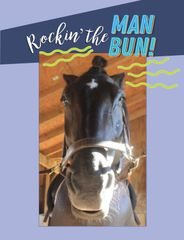 Birthday Card: Rocking the Man Bun - Item # GC B Man Bun