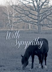 Sympathy Card: With Sympathy NEW - Item # GC 12 Sym