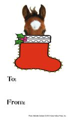 Gift Tag: Foal in Stocking - Item # GT foal
