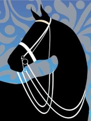 Birthday Card: Silo Horse with white Double Bridle Item# GC B Silo