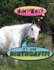 Birthday Card: Huh wha? It's your birthday? - Item # GC Gray