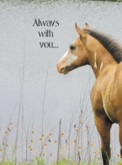Sympathy Card: Always with you - Item # GC 8 Sym