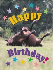 Birthday Card: Happy Birthday! - Item # GC Rolling