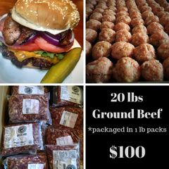 20 lbs Ground Beef