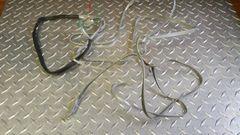 True 450 Treadmill Wire Harness Used Ref. # JG3072