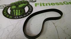 Nautilus/Stairmaster/Quinton Treadmill Drive Belt Used ref. # jg4649