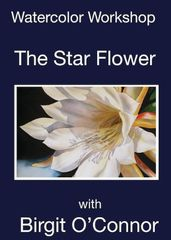 DVD Star Flower