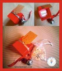 "Santa ""BELIEVE"" Bell sets pretty red box and personalised tag"