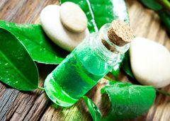 OCP&E Essential Oils, Eucalyptus Tea Tree Blend