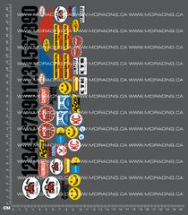 1/10TH TAM 58016 - RACING BUGGY SAND SCORCHER - SHEET B DECALS