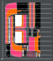 1/10TH ASSOCIATED - RC10 - PROTECH 2 - MANUAL ART DECALS