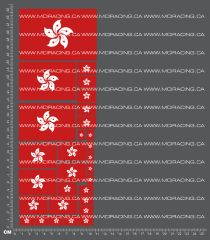 1/10TH FLAGS - HONG KONG DECALS