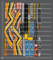 1/10TH TAM 44001 - TR15-T DECALS